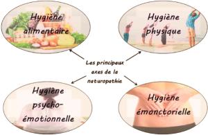 HygieneVital