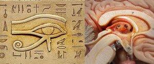 La glande pinéale sous le voile hiéroglyphique